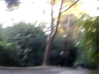 Al Parco 7